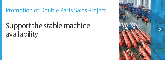 Promotion of Double Parts Sales Project