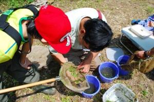 環境学習プログラム「浦幌エコスクール」にて