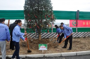 平安ツリーの植樹と安全祈願の飾り