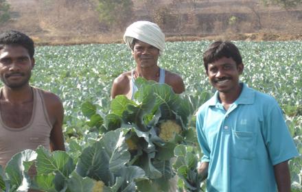 写真:インドでの地域貢献活動