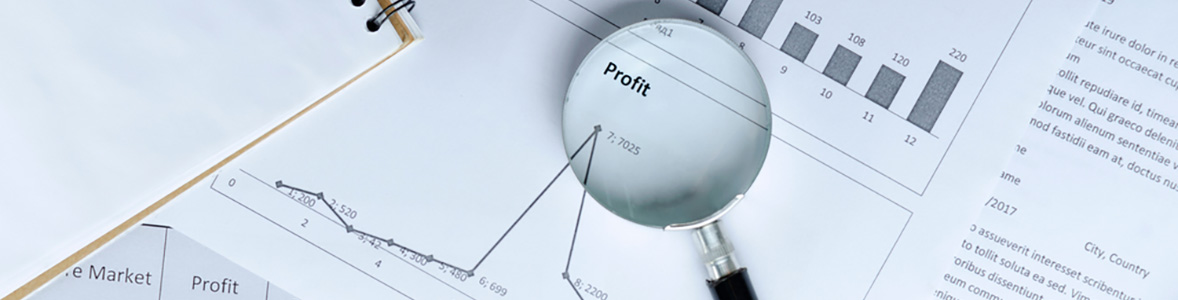 Business Results & Financial Information